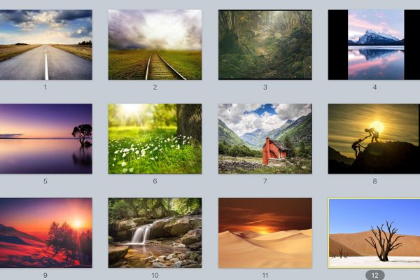Online-therapy-landscape-images